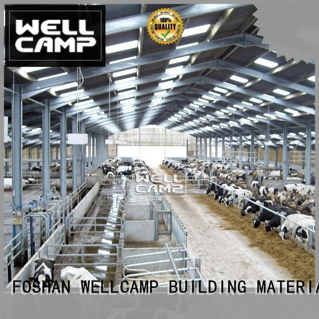 steel shed buildings maker for cow shed WELLCAMP, WELLCAMP prefab house, WELLCAMP container house